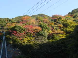 裏山 民宿ニュー白坂